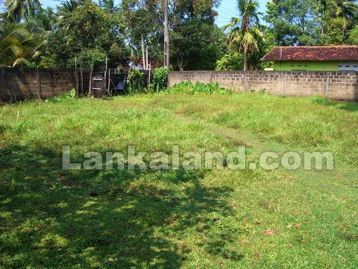 Sri Lanka Rent A Car Rental Cars Colombo Rent A Van Kandy ...